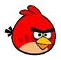 red bird คุณเคยเห็น Angry Birds ตัวจริงแล้วหรือยัง ?