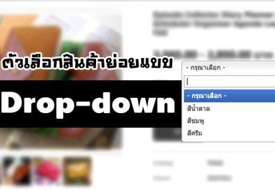 จัดมาตามคำเรียกร้อง แสดงตัวเลือกสินค้าย่อย แบบ Drop-down !!